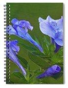 Blue On Green Spiral Notebook