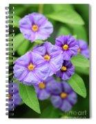 Blue Potato Bush Spiral Notebook