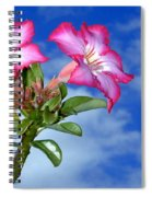 Blue Sky Pink Flower Spiral Notebook