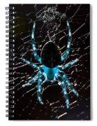 Blue Spider Spiral Notebook