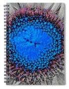 Blue Spot Spiral Notebook