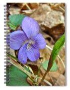 Blue Violet Wildflower - Viola Spp Spiral Notebook
