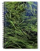 Blue Water Green Grass Glacier National Park Spiral Notebook