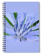 Blue Wild Flower Spiral Notebook