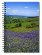 Bluebell Flowers On A Landscape, County Spiral Notebook