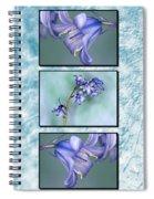 Bluebell Triptych Spiral Notebook