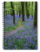 Bluebell Wood, Near Boyle, Co Spiral Notebook