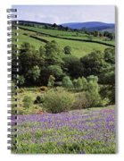 Bluebells In A Field, Sally Gap, County Spiral Notebook