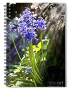Bluebells In The Woods Spiral Notebook