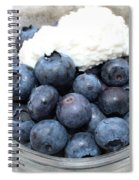 Blueberries And Cottage Cheese Spiral Notebook