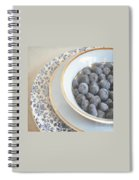 Blueberries In Blue And White China Bowl Spiral Notebook