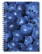 Blueberries With Waterdrops Spiral Notebook