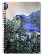 Bluebird Christmas Wreath Spiral Notebook
