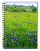 Bluebonnet Dreams Spiral Notebook