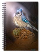 Bluejay In Spotlight Spiral Notebook