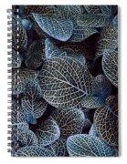 Bluey Spiral Notebook