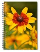 Blush-eyed Susan Spiral Notebook