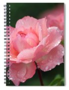 Blush Spiral Notebook