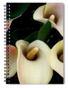 Blushing Calla Lilies Spiral Notebook