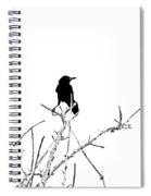 Boattail Grackle Spiral Notebook