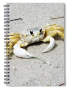 Boca Grande Crab Spiral Notebook