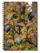 Bog Bilberry Spiral Notebook
