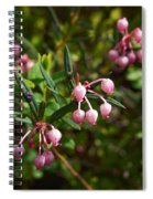 Bog-rosemary Spiral Notebook