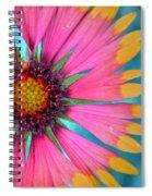 Boldness Spiral Notebook