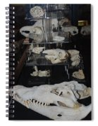 Bone Heads Spiral Notebook