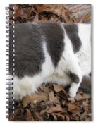 Boojer In Leaves Spiral Notebook