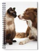 Border Collie & Siamese Cat Spiral Notebook