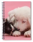 Border Collie Pup And Guinea Pig Spiral Notebook