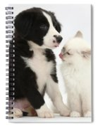 Border Collie Pup And White Kitten Spiral Notebook