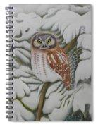 Boreal Owl Spiral Notebook