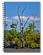 Born On The Bayou Spiral Notebook