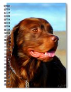 Bosco At The Beach Spiral Notebook