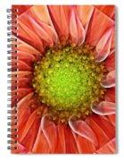 Botanical Swirl Spiral Notebook