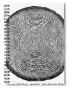 Botany:  Fir Tree Trunk Spiral Notebook