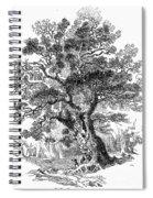 Botany: Oak Tree Spiral Notebook