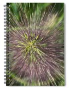 Bottle Brush By Nature Spiral Notebook