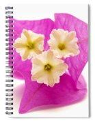 Bougainvillea Flower Spiral Notebook