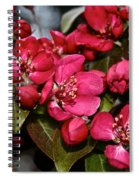Bounty Forthcoming Spiral Notebook