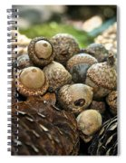 Bounty Spiral Notebook