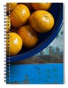 Bounty Spiral Notebook
