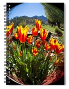 Bouquet In A Bubble Spiral Notebook