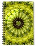 Bouquet Of Roses Kaleidoscope 11 Spiral Notebook