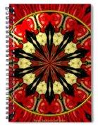 Bouquet Of Roses Kaleidoscope 8 Spiral Notebook