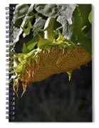 Bowed Head Spiral Notebook