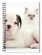 Boxer Puppy And Blue-point Kitten Spiral Notebook