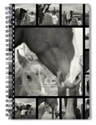 Boy Meets Horse Spiral Notebook
